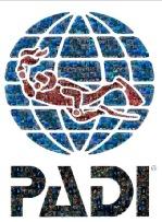 PADI Logo Mosaic