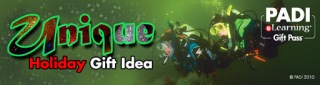 How to Buy and Use PADI eLearning gift codes
