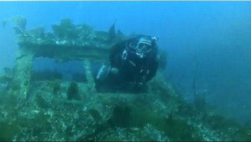 Channel Islands Scuba Diving video