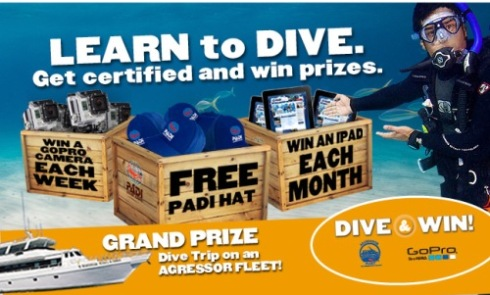 Dive and Win Banner