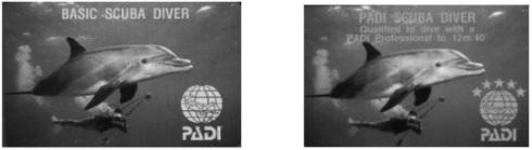 Basic Suba Diver certification card