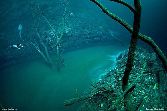 Cenote Angelita  By Anatoly Beloshchin