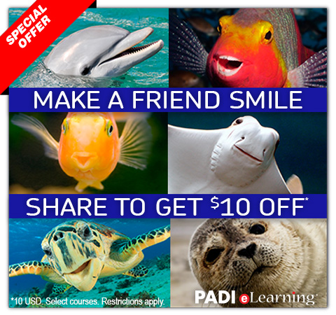 PADI Refer a Friend 2014