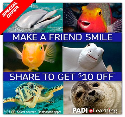 PADI Refer a Friend 2014