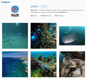 PADI on Instagram