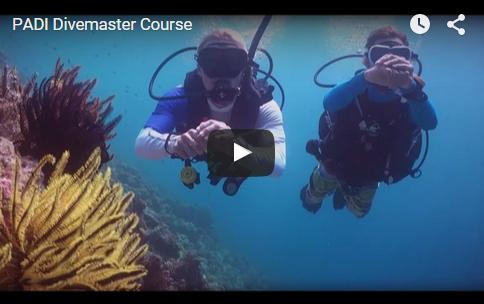 PADI Divemaster Video