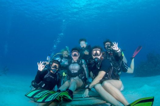 PADI-Womens-Dive-Day-Divetech