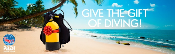 give-the-gift-of-diving