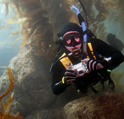 DSAT Dive Day 2008